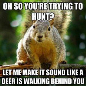 hunting-meme-6